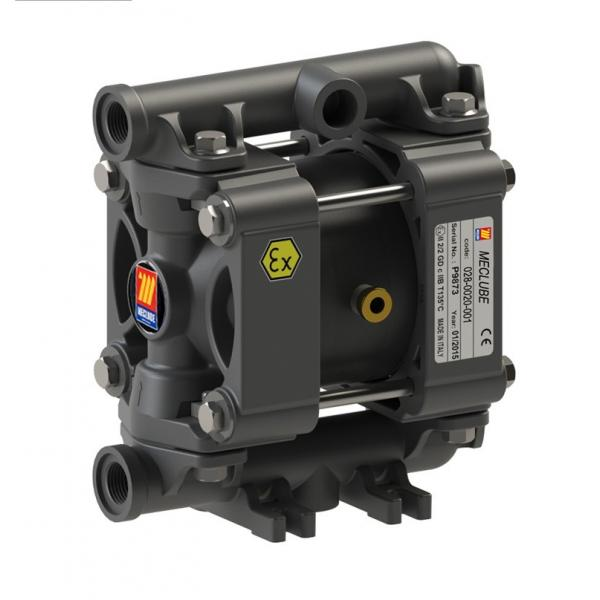 MECLUBE Air operated double diaphragm pumps Mod. P20 in POLYPROPYLENE Gasket in nbr - 1