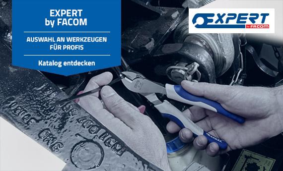 Expert: professionelle Werkzeuge, Sortimente und Autoreparatur auf Mr. Worker erhältlich