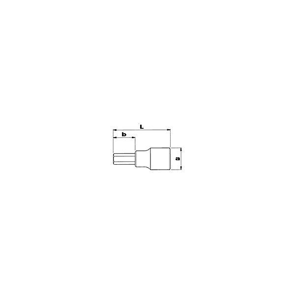 """USAG 3/4"""" Socket bits for Allen screws - 1"""