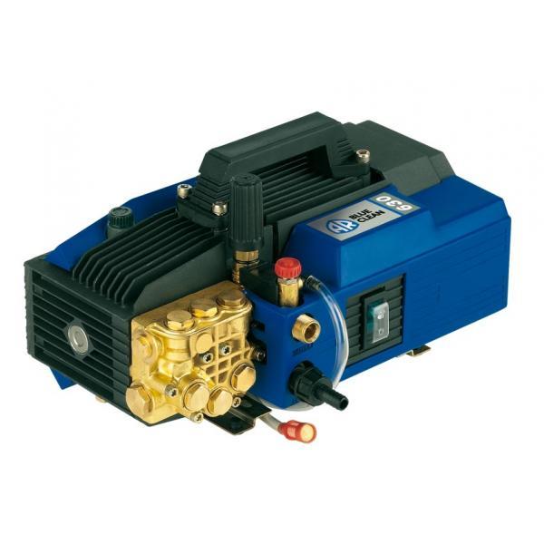 ANNOVI REVERBERI 12360 - AR 630 Idropulitrice Professionale ad acqua fredda AR BLUE CLEAN 120 bar, 600 l/h, 2600W - 1
