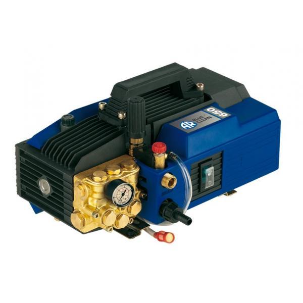 ANNOVI REVERBERI 12455 - AR 650 Idropulitrice Professionale ad acqua fredda AR BLUE CLEAN 150 bar, 480 l/h, 3000W - 1