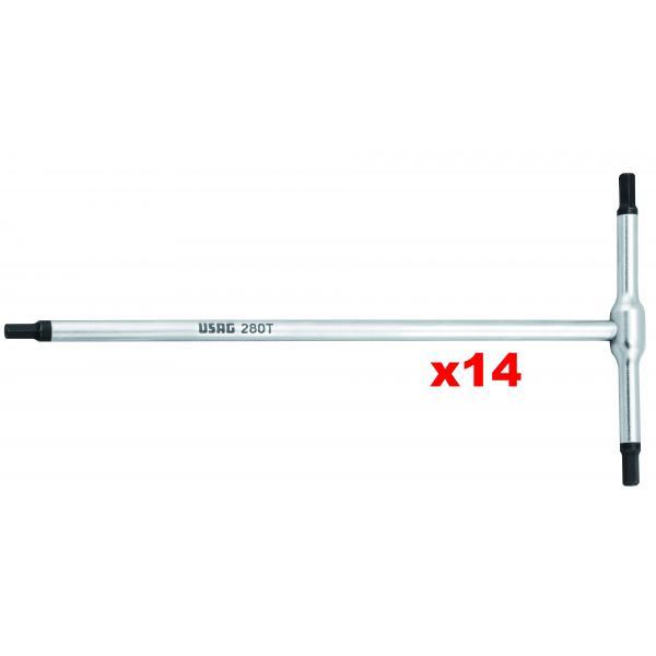 USAG Serie di 14 chiavi a T con maschio esagonale - 2